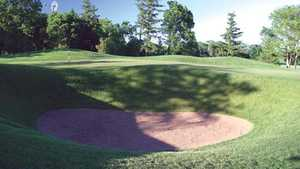 Ivanhoe Club - Forest: #8