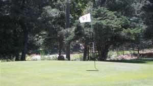 Quail Ridge Golf World Executive GC: #14