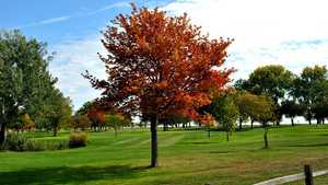 Lake St. Clair Metropark GC