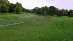 New Albany Springs GC