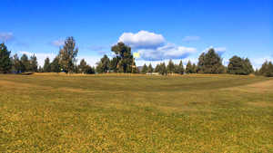 Greens at Redmond