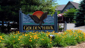 Golden Hawk GC
