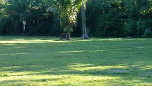 El Chocolatal Golf Eco-Resort