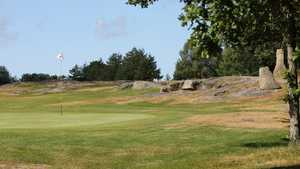 Roe GC - Old: #11