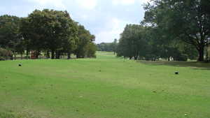 Wright Park GC: #5