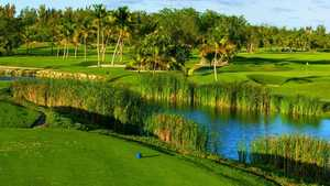 Lakes at Barcelo Bavaro GC: #3