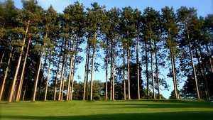 Pine Valley GC