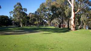 North Adelaide Golf - Par 3