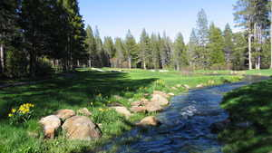 Tahoe Donner GC: #18