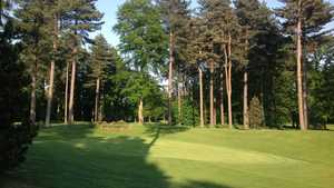 5th green on the Forest Course