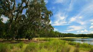 Hammock Dunes - Rees Jones Creek: #11