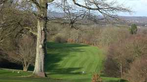Tree lined fairway at Beauport Park