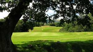 Trethorne GC: #8