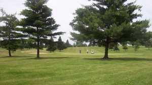 Willow Tree GC: #7