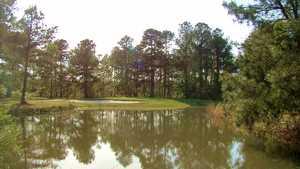 Swamp Fox GC: #12