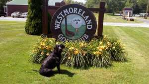 Westmoreland GC