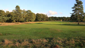 Walton Heath GC - Old