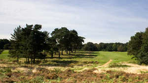 Walton Heath GC - New