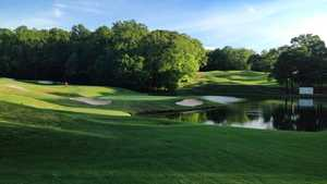 #5 on the Par-3 Course at Chateau Elan Golf Club