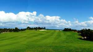 Playa Mujeres GC: Siganture hole