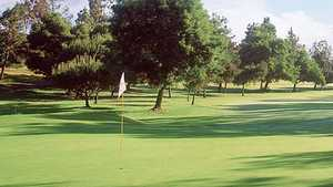 St. Mark Executive GC