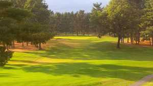 International GC - Pines