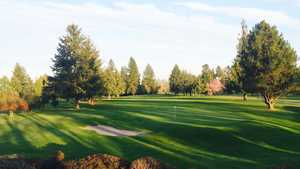Forest Hills: #18