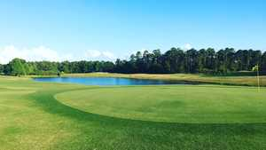 CC of Mount Dora: #1