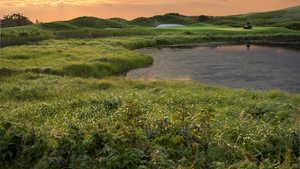 The Links at Crowbush Cove: #8
