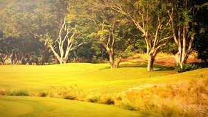 Prestige Golfshire GC