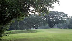 Royal Calcutta GC: #13