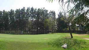 Silver Oak Kala Jyothi GC