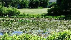 Lake Lackawanna GC: #3