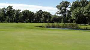 Black Bear GC: #11