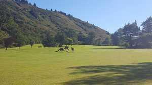 Bear Valley GC