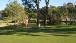 Kimiad Golf - Par 3: #5