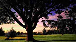 Meon Course at Meon Valley: #18