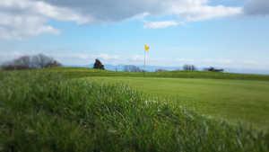 Llyn Golf