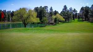 Pinetop Lakes GCC: 8th green