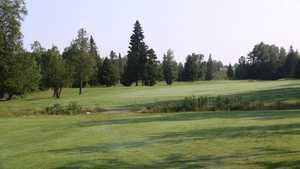 Spruce Needles GC