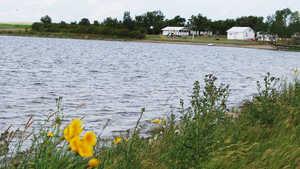McLaren Lake Regional Park
