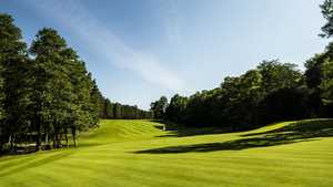 Halmstad GC - North: #12
