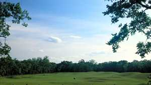 Sienna Plantation GC: Driving range