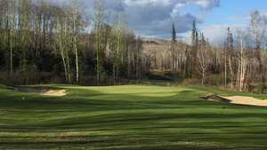 Fox Tail at Fort McMurray: #6