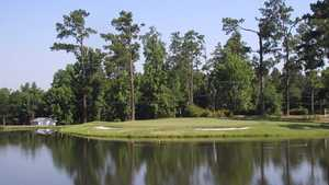 Shannon Greens GC: #18