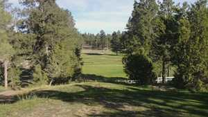 Pine Meadow CC: #4