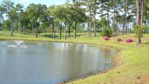 Springview CC