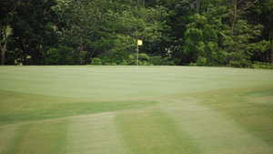 Diamond Trail GC: #5