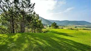 The Dalat at 1200 Country Club and Private Estate