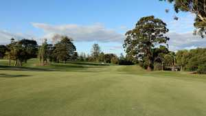 Royal Auckland GC